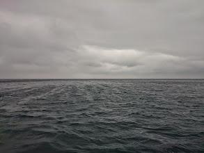 Photo: ・・・風がとてつもなく吹いてきて、その後土砂降り!