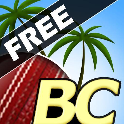 Beach Cricket (game)
