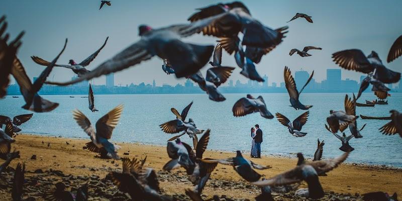 Wedding photographer Pramod Mitta (pramod). Photo of 30.08.2017