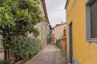 Photo: Looking down an alley on the road tin the village