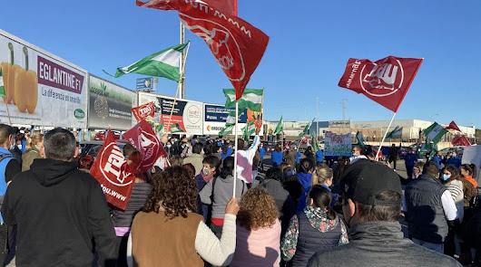 Los trabajadores del manipulado no se rinden y anuncian nuevas huelgas
