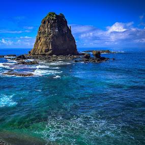 Frog Stone (Watu Kodok) at Papuma Beach by Shohibul Huda - Landscapes Waterscapes ( jember, watu kodok, pantai, waterscape, indonesia, papuma beach, east java, beach, landscape, papuma )