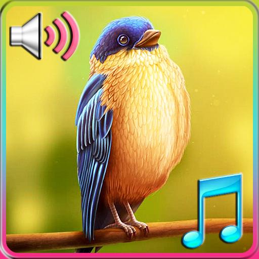 個人化App|大自然鳥叫鈴聲&動態桌布 LOGO-3C達人阿輝的APP