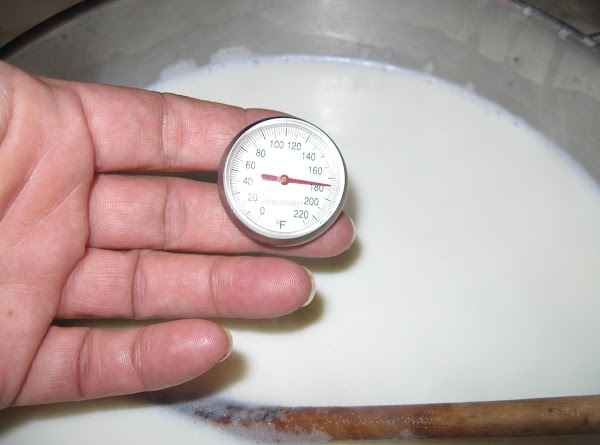 Pour milk into pot and heat slowly on med. heat to almost boiling (180*F).