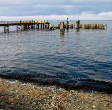 Photo: The Davis Bay pier on the Sunshine Coast is quite a popular place to visit in the summer when the population of the coast surges. Now in the autumn and winter things are a bit more sedate. Which many of the retires in this town likely favour ;)