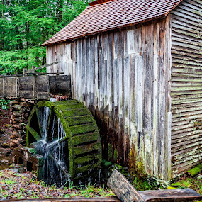 Close Mill House by Dale Fillmore - Buildings & Architecture Public & Historical ( mill house, water wheel, historical, architecture, old building )
