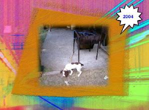 Photo: Sagra 2004 - Preparativi della sagra - la mascotte - Foto 3 di 13