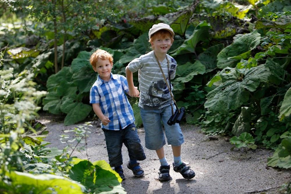 Zwei Jungen unterwegs auf einem schmalen Pfad zwischen grüner Natur