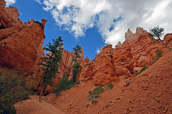 Orange Canyon