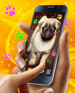 Cute Puppy Live Wallpaper - náhled