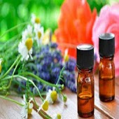 Tải crea perfumes APK