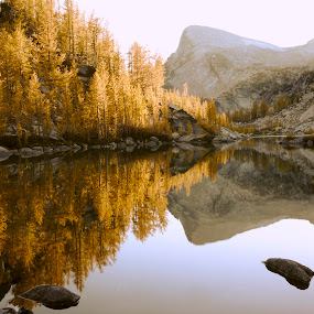 Perfection by Rakesh Malik - Landscapes Mountains & Hills ( enchantments, alpine lake, reflection, mountain, fall colors, forest, perfection lake, larches, tranquil, wilderness, mountains, alpine lakes wilderness, nature, color, autumn, fall, outdoor, annapurna, trees, larch,  )