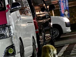 ハイエースバン TRH200Vのカスタム事例画像 シュナ 🐾🐶🐾CT2期生さんの2020年07月08日06:03の投稿