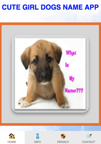 Boy Dogs Names For Hope