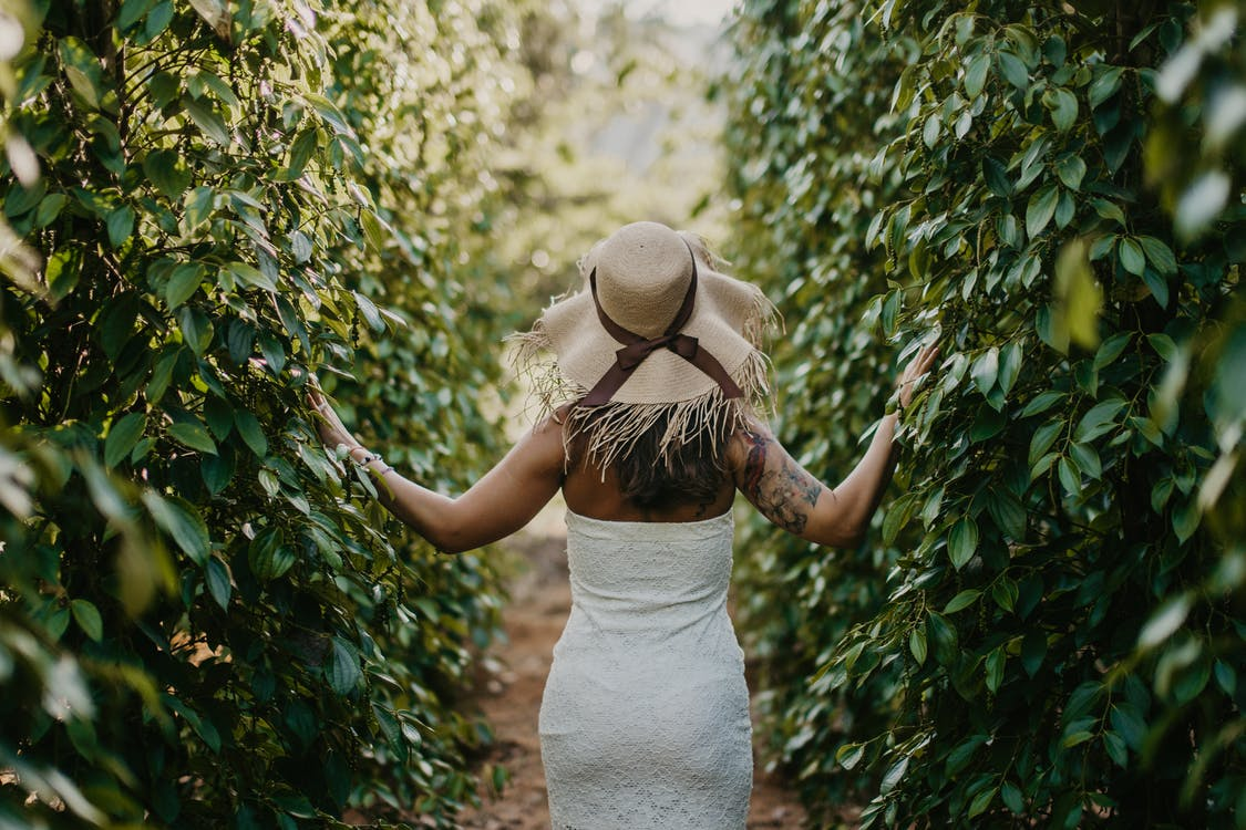 Woman in White Dress and Brown Hat Standing Near Green Leaf Plants