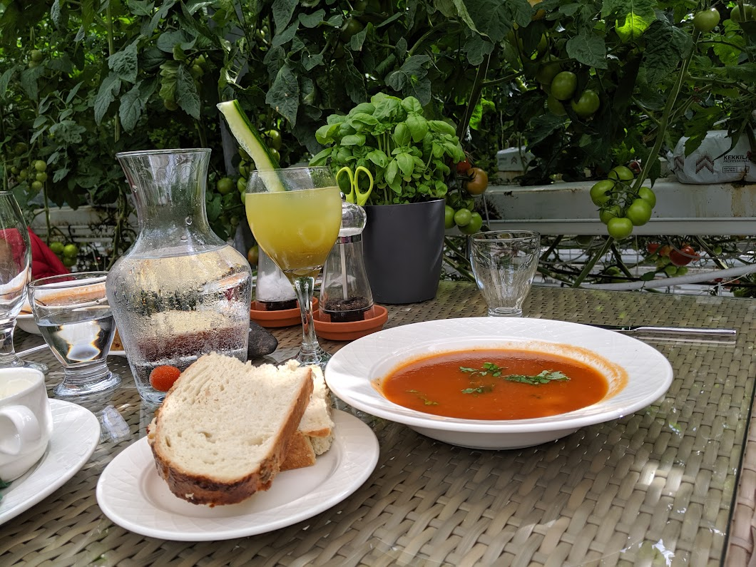 Tomato soup and tomato cocktail at Friðheimar restaurant in Iceland