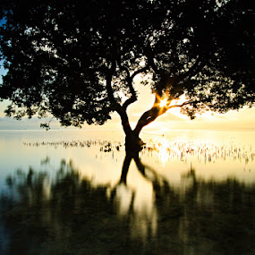 by Rikkiboi Arim - Landscapes Sunsets & Sunrises