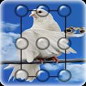 Pigeon Pattern Lock Screen icon