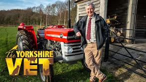 The Yorkshire Vet thumbnail