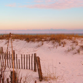 Beach by Brenda Shoemake - Landscapes Beaches (  )