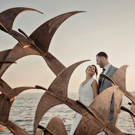 by Zeljko Marcina - Wedding Bride & Groom ( love, seagul, wedding, croatia, sea, monument, split, seaside, bride, groom )