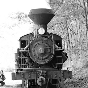 by David Stemple - Transportation Trains