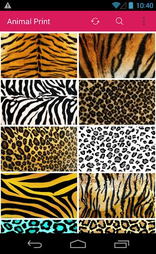 Cute Animal Print Wallpapers