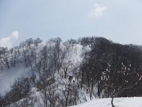 県境稜線へ登る