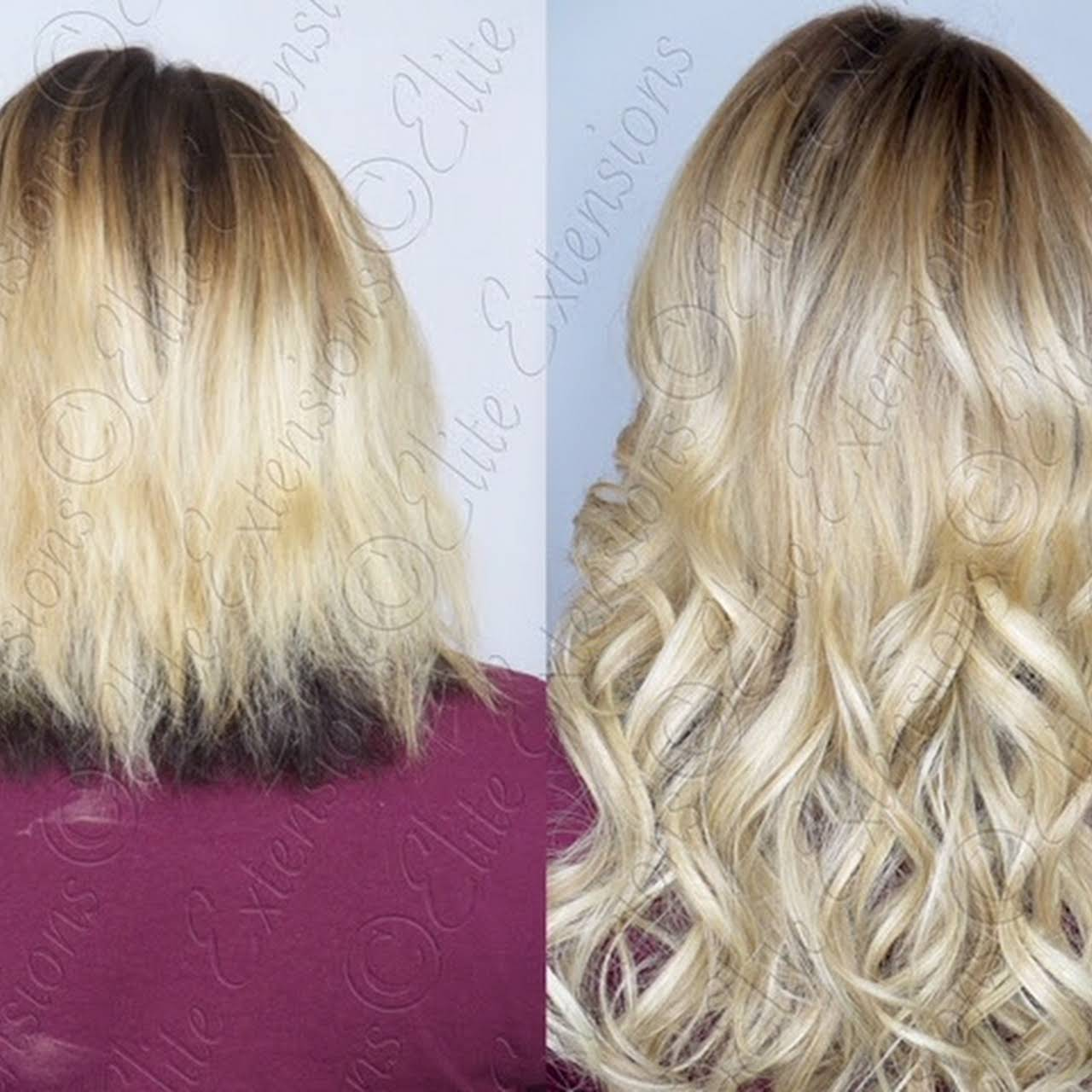 Elite Extensions Michigans Best Hair Extensions