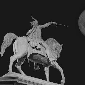 Horseman with sword under the Moon by Dražen Škrinjarić - Black & White Abstract ( defense, moon, europe, horse, croatia, zagreb, statue, battle, horseman, dark, night, scultpure, defend, attack, sword )