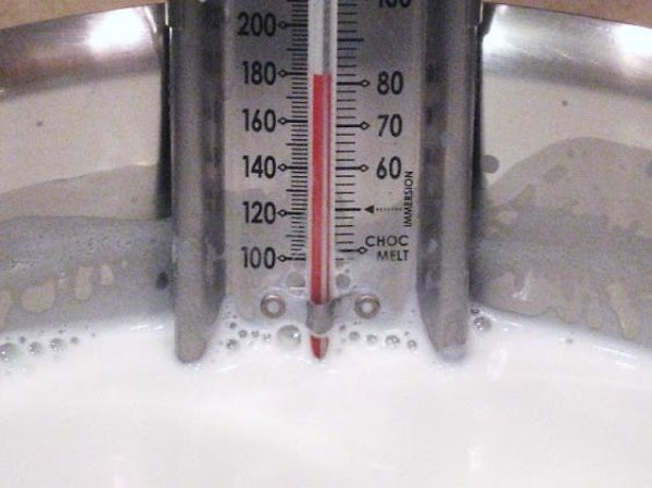 Clip a thermometer on the side of large stock pot. Heat the milk and...
