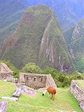 Photo: PERU