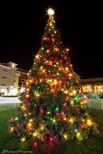 Photo: Christmas Tree @ Cupertino City Center, Cupertino, CA - http://photo.leptians.net/#Christmas_Tree.jpg