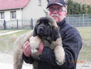 Photo: Vlado lebt jetzt in Rothenklempenow -  Mecklenburg-Vorpommern