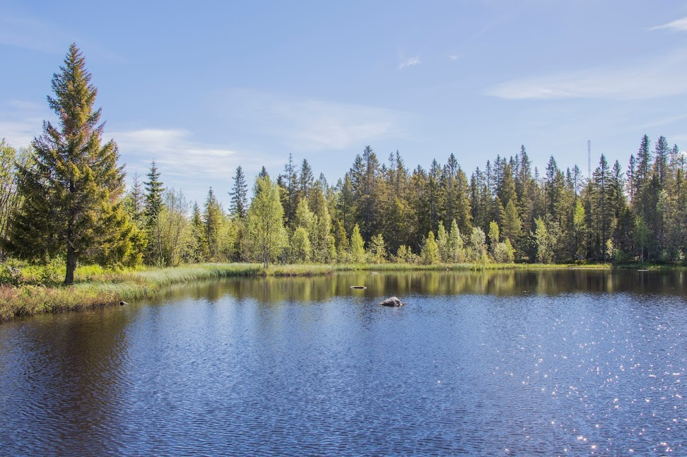 outdoor-activiteit-zweden