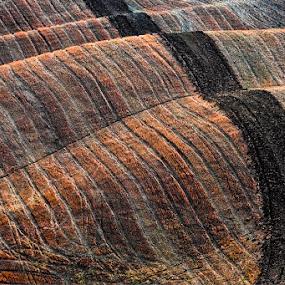 by Jure Kravanja - Landscapes Prairies, Meadows & Fields