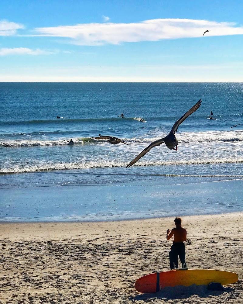 Surf a Cocoa Beach di GiuChi