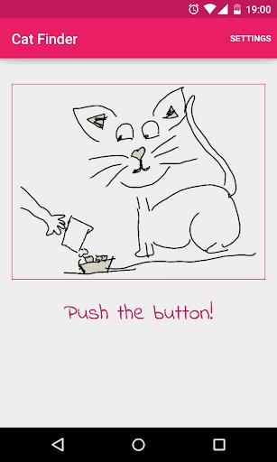 Cat Finder