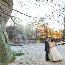 Wedding photographer Yulya Fedishin (juliafedyshyn). Photo of 14.11.2017