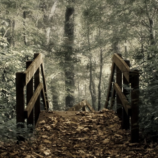 Creepy Forest Wallpaper 10 02 Adfree Apk For Android