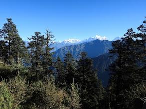 Photo: Ngawar
