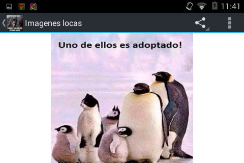 Imagenes locas Screenshot