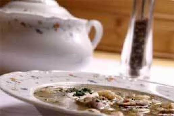 Fresh Mushroom Soup