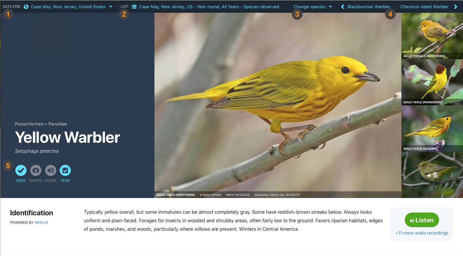 All About: Explore Species   eBird