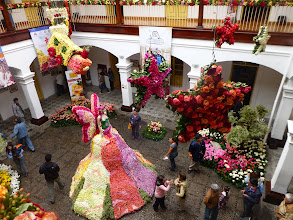 Photo: Central courtyard of the Provincial Museum flower exhibit