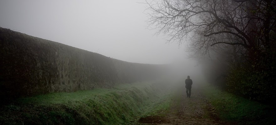 Sentiero nella nebbia di aliscaforotto