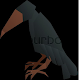 Download Crow Bird Fact For PC Windows and Mac