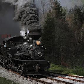 Log Train by Chuck  Gordon  - Transportation Trains ( steam train )