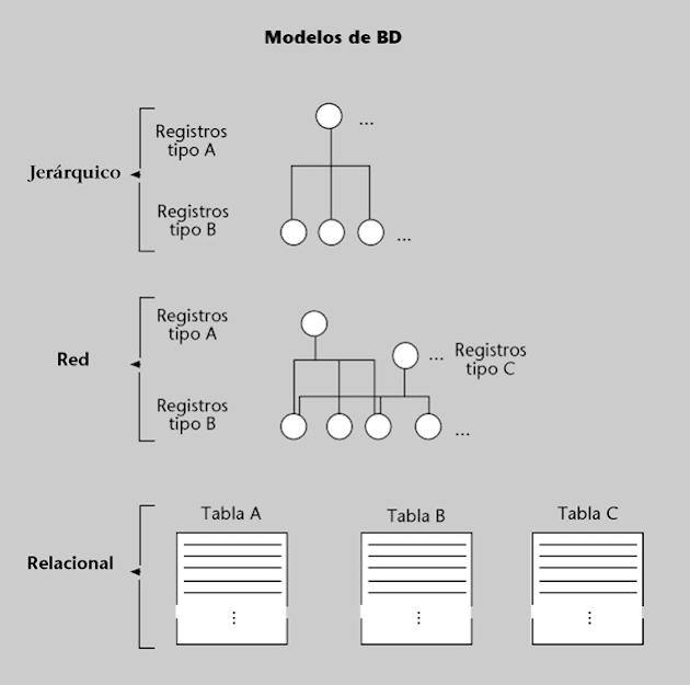Modelos de bases de datos. Esquema de bases de datos, relacional, jerárquica y red