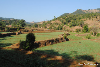 Photo: Trails from Paddy Fields...